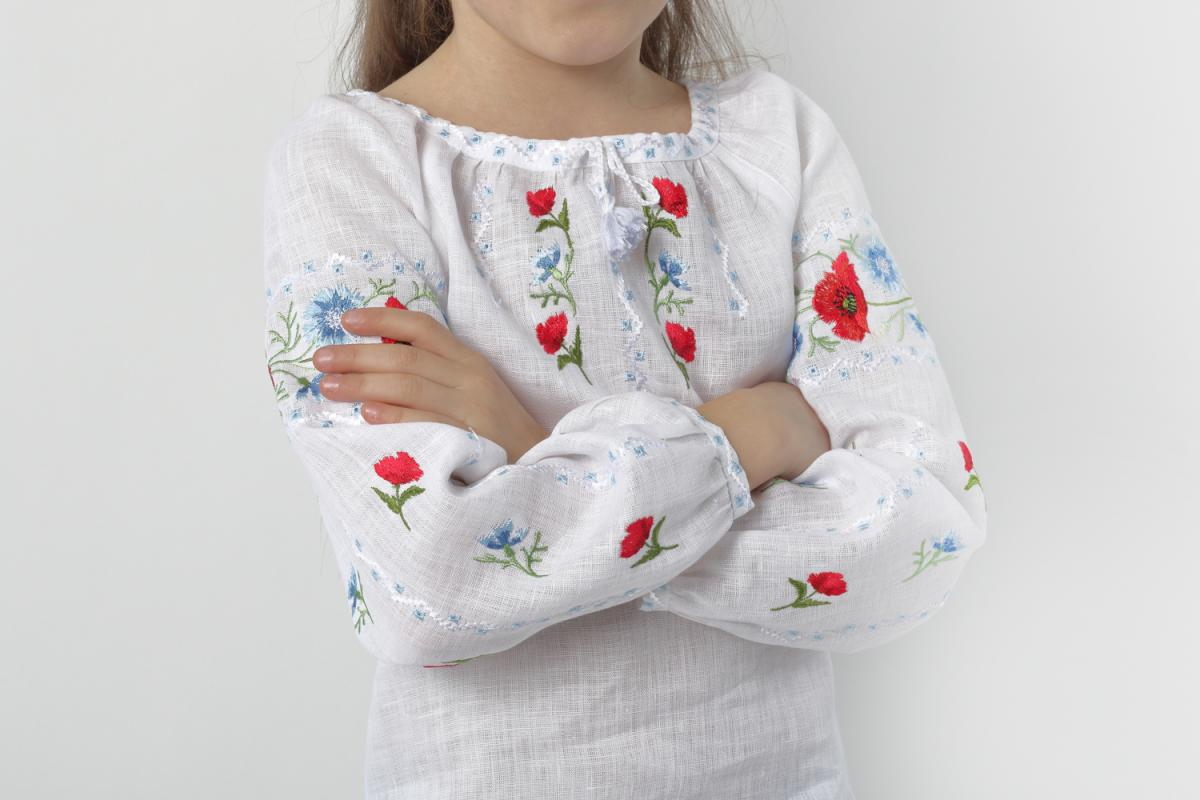 "Embroidery for girls ""Voloshkovy Paradise"". Photo №4. 