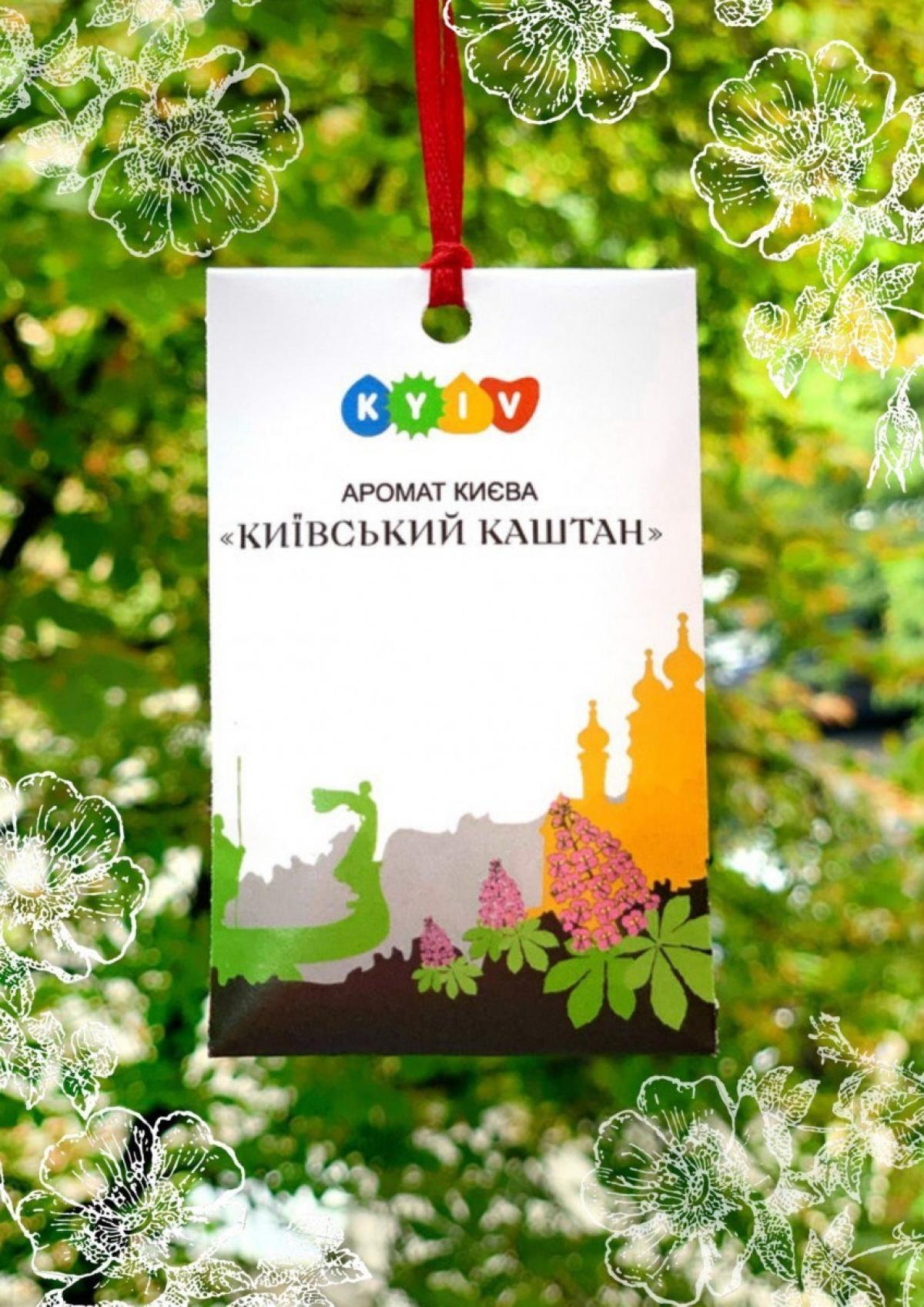 The aroma of Kyiv  Kyiv  chestnut. Photo №1. | Narodnyi dim Ukraine